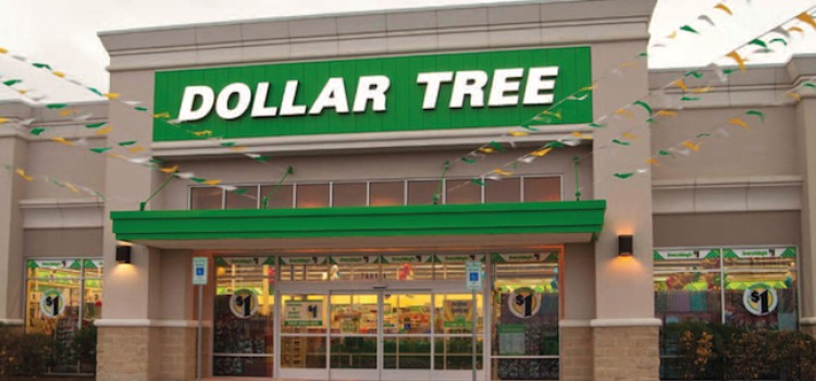Dollar Tree posts sales gain in second quarter