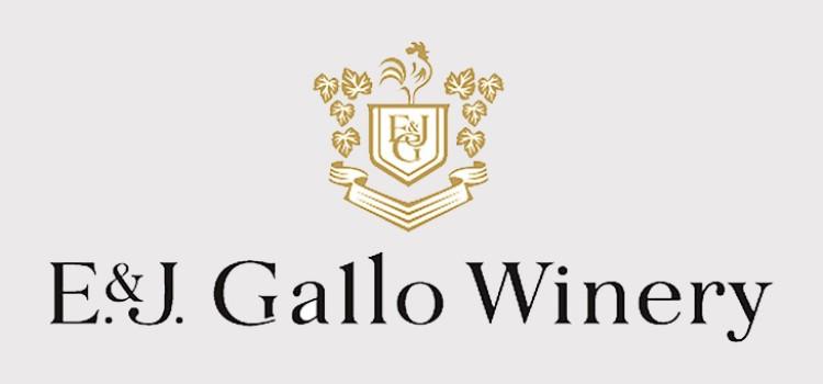 Gallo launches new consumer trends study