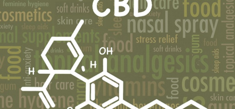 CBD category is gaining momentum