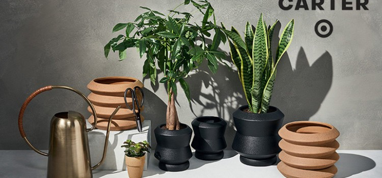 Target launches Hilton Carter plant accessories line