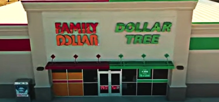 Dollar Tree posts sales, net income gains in Q2